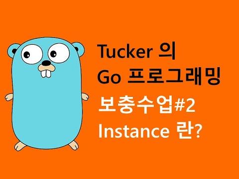컴맹을 위한 Go 언어 프로그래밍 강좌 보충수업 - Instance 란