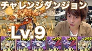 パズドラ【チャレンジダンジョン】Lv 9 パンドラPT