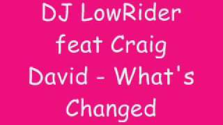 DJ LowRider feat Craig David - What's Changed Video
