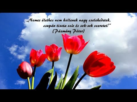 idézetek szép Szép idézetek, gondolatok!   YouTube
