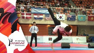 Gold Medal, Freestyle Male Over 17 Final, NA Tae Joo(KOR)