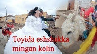 TO'YIDA // KELINNI ESHAK ARAVAGA MINDIRDI