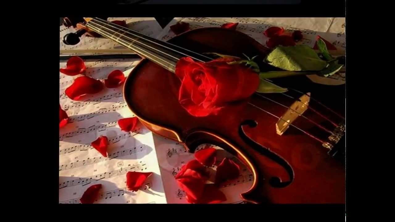 Images Of Violin Red Rose Wallpapers