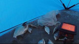 Ловля леща по первому льду Залив Курма Сезон 2020 2021