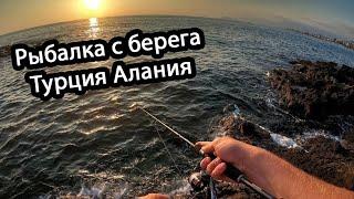 Морская рыбалка с берега в турции на спиннинг Пытаюсь найти рыбу
