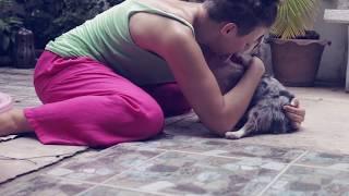 За кадром СОБАКИ И ДЕТИ | Чихуахуа Софи(Это бекстейдж со съемок полезного КУРСА видео про собак и детей, их совместную жизнь в доме: СОБАКА И РЕБЕНО..., 2015-09-11T04:12:00.000Z)