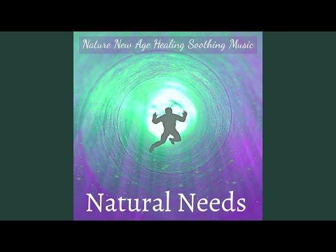 Walking Meditation Music Expert