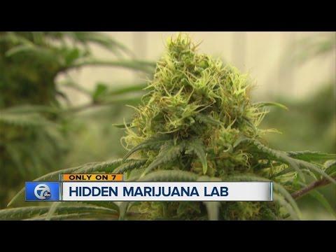 Hidden marijuana lab