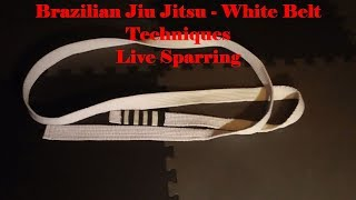 BJJ White Belt Techniques - Episode 1 - Sparring Session