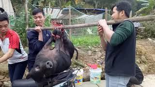 Thịt lợn tết lợn đen bắc Kạn