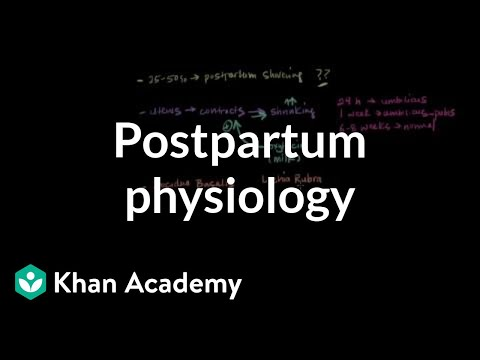 Postpartum physiology | Reproductive system physiology | NCLEX-RN | Khan Academy