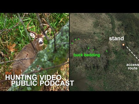 Video Podcast #3 | Hunting Buck Bedding, Escape Routes, Legendary Whitetails Partnership