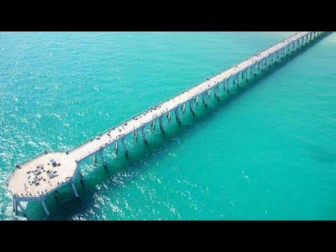 King Mackerel Fising Navarre Beach Pier Florida