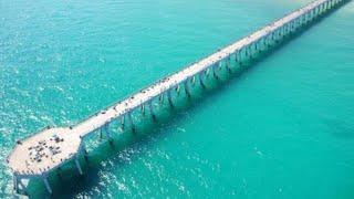 King Mackerel Navarre Florida Pier Fishing