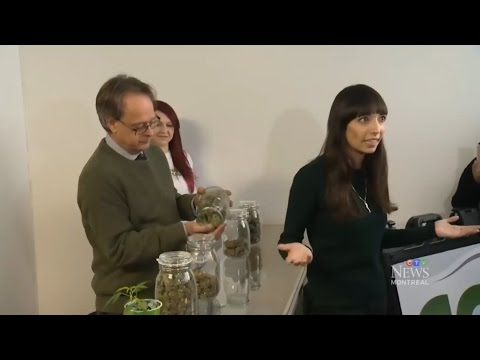 CTV Montreal Huge lineups as cannabis chain stores open for business in Montreal