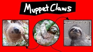 muppet-claws-explained