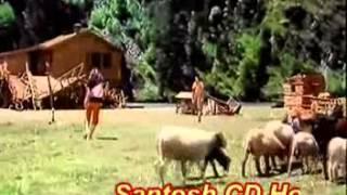 dj jitu & ajay jab hum jawan by santosh cd house