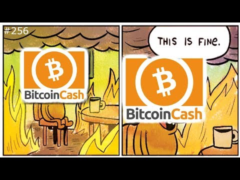 🍴 🔥 Bitcoin Cash Hard Fork Aftermath 🔥🍴