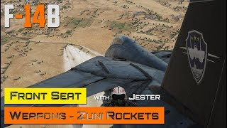 DCS World - F-14 Tomcat - Front Seat - Weapons - Zuni Rockets with Jester