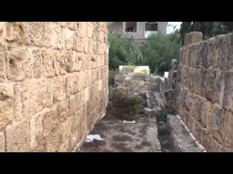 Ancient mosaics, Tyre, Lebanon