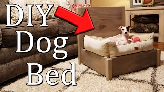 DIY Dog Bed Frame for Small Dogs