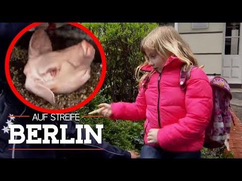 Miese Erpressung: Warum weint die kleine Emma?   Auf Streife - Berlin   SAT.1 TV