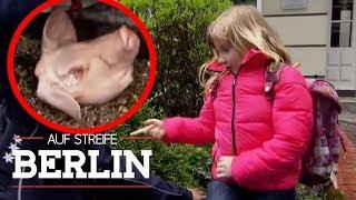 Miese Erpressung: Warum weint die kleine Emma? | Auf Streife - Berlin | SAT.1 TV