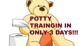 POTTY TRAINING IN 3 DAYS!