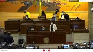 Plenaria Cámara de Representantes 08/06/2021