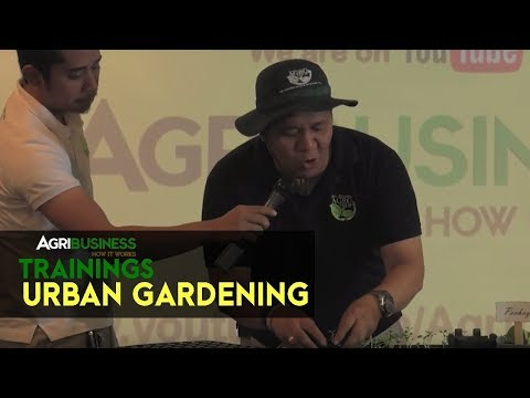 Urban Gardening: Urban and backyard gardening of vegetables | Agribusiness How It Works Trainings