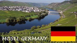 Mosel Wine tourism - German Riesling Wine from Moselle Valley - Germany wines