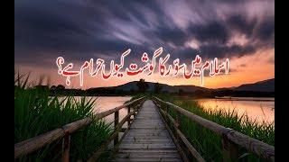 ISLAM mein Suar (Pig) kyun Haram ha? bayan Urdu/Hindi