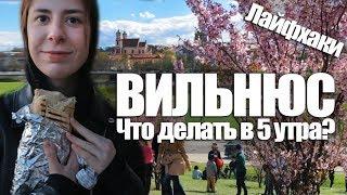 Вильнюс: Топ бесплатных мест, которые надо посетить ! Гайд по Вильнюсу.