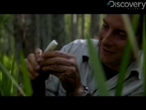 Man vs. Wild - Swamp Breakfast
