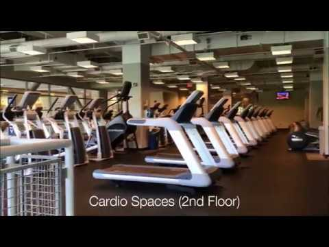 inside the workout gym with treadmills