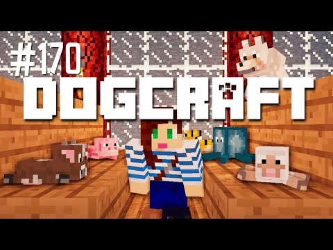 POLLY'S PET SUPPLY - DOGCRAFT (EP.170)