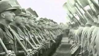 AnarchyX - Wurzel allen Uebels (feat.Dian the Sain | BeSonic