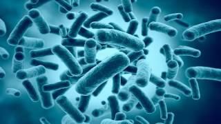 видео Аэробные и анаэробные процессы в септиках