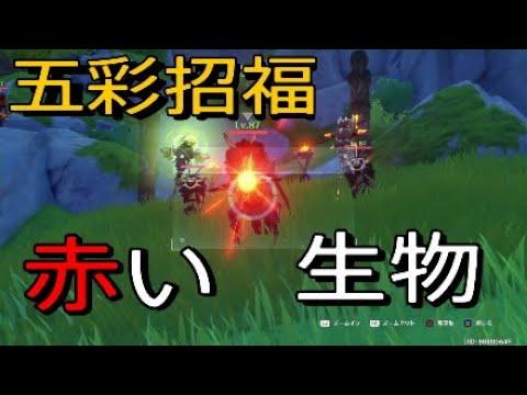 原 神 赤い 生物 【原神】写真の赤色のある生物 ワープ2箇所で速攻10体