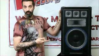 VRTX12 5-way Passive Speaker Technical Pro