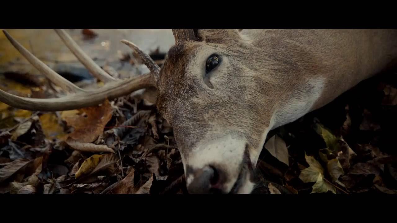 [Vietsub] Split - 23 Nhân Cách James Mcavoy Trailer #1