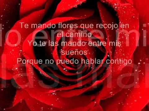 fonseca te mando flores lyrics
