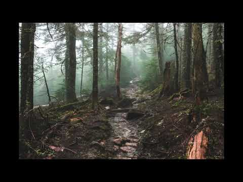 free download mp3 weightless marconi union
