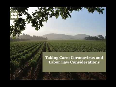wine article Winery Labor Law Concerns Re Covid 19