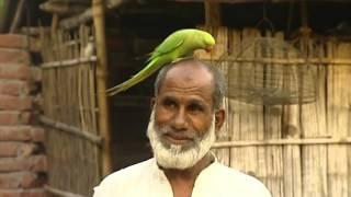 পাবনা ঈশ্বরদীর জয়নগর গ্রামের কসিম উদ্দিন টিয়া পালেন সন্তানের মত যত্নে