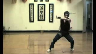 Crazy Demonstration From Master Chen Yong Fa Choy Lay Fut