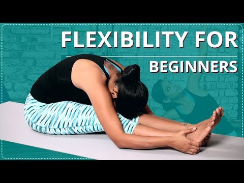 stretches for flexibility  flexibility for beginners