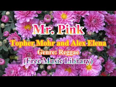 Mr  Pink _Topher Mohr and Alex Elena (Free Music Library)