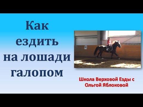 Как правильно ездить галопом на лошади видео