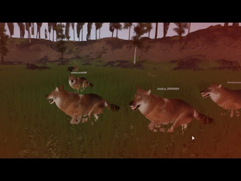 Cenozoic Survival | Life In A Dire Wolf Pack (13+)